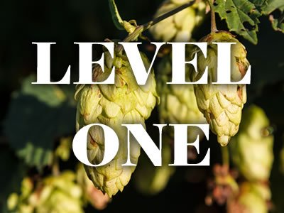 Level One Beer Brewing